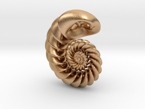 Nautilus Pendant in Natural Bronze: Small
