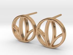 Herbalife Nutrition Earring_V_2.1 in Polished Bronze