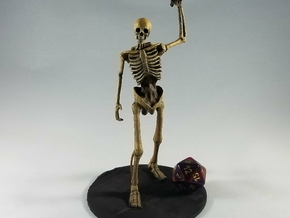 Giant Skeleton in Smooth Fine Detail Plastic