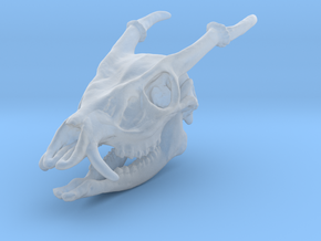 Muntjac Skull Solid Miniature in Smooth Fine Detail Plastic