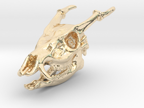 Muntjac Skull Solid Miniature in 14k Gold Plated Brass