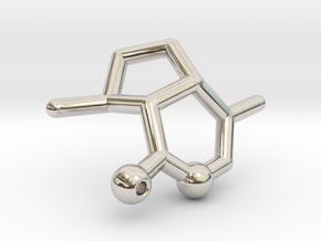 Catnip Pendant - Your Cat will love it! in Rhodium Plated Brass