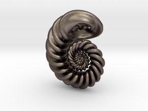 Fractal Nautilus Steel in Polished Bronzed-Silver Steel