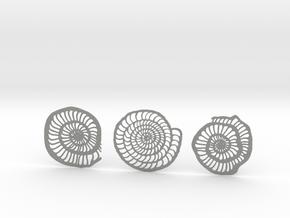 Foraminifera Coasters in Gray Professional Plastic