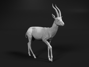Thomson's Gazelle 1:48 Walking Male in Smooth Fine Detail Plastic