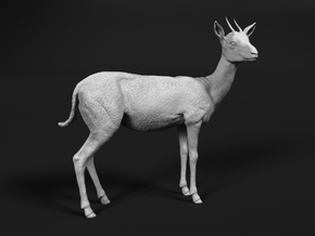 Thomson's Gazelle 1:6 Standing Female in White Natural Versatile Plastic
