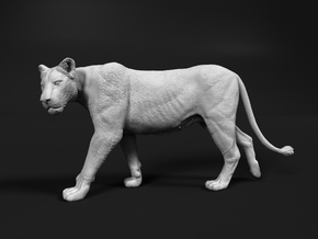 Lion 1:22 Walking Lioness 2 in White Natural Versatile Plastic