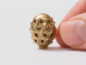 Cyrtophormis Radiolarian in Natural Bronze