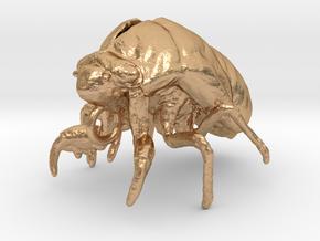 Cicada Nymph Molt Pendant in Natural Bronze