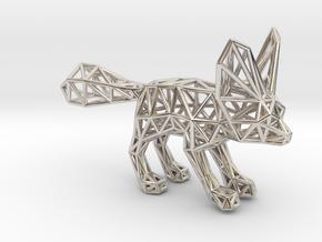 Fennec Fox (adult) in Platinum