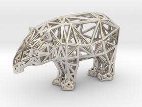 Baird's Tapir (adult male) in Platinum