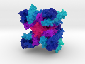 Insect Olfactory Receptor Orco in Natural Full Color Sandstone