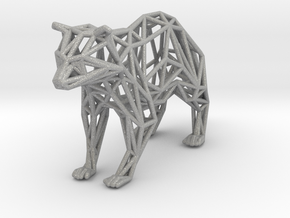 Racoon in Aluminum