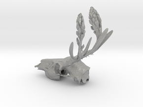 Rite of Spring- Deer Skull in Aluminum