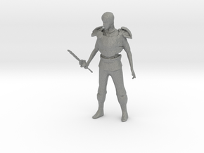1-87 Scale Paladin in Gray Professional Plastic