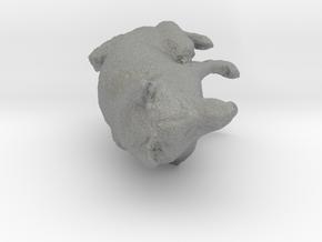 Shiba Inu Dog_6CM in Gray PA12