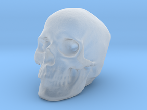 Skull 3DXS in Smooth Fine Detail Plastic