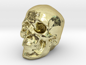 Skull 3DXS in 18k Gold Plated Brass