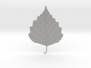 Birch tree leaf in Aluminum