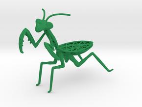 Praying mantis in Green Processed Versatile Plastic