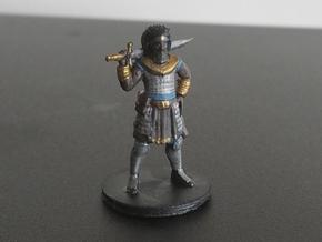 Champion - Chultan in Smooth Fine Detail Plastic
