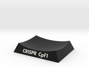 CRISPR Cpf1 AR Base in Natural Full Color Sandstone: Small