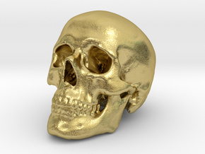 Skull Scientific 62mm in Natural Brass