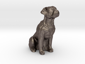 Boxer dog in Polished Bronzed-Silver Steel