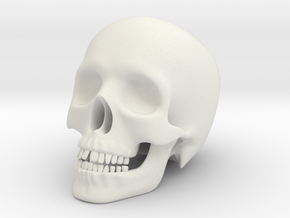 Human Skull (Medium Size-10cm Tall) in White Natural Versatile Plastic