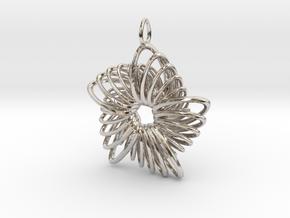 5 Point Nautilus Rings - 4cm in Platinum