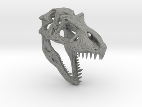 TRexSkull in Gray Professional Plastic