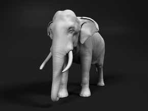 Indian Elephant 1:24 Standing Male in White Natural Versatile Plastic