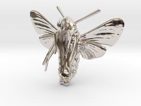 Hummingbird Hawk-Moth Pendant (hollow version) in Rhodium Plated Brass