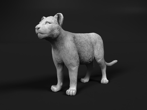 Lion 1:64 Standing Cub in Smooth Fine Detail Plastic