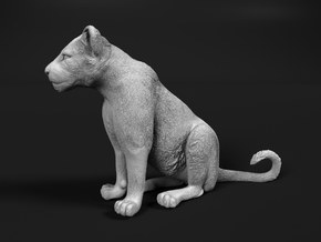 Lion 1:87 Sitting Cub in Smooth Fine Detail Plastic
