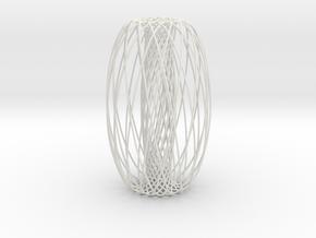 TorusEgg in White Natural Versatile Plastic