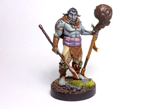 Firbolg Druid in Smooth Fine Detail Plastic
