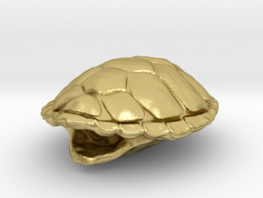Turtle Shell Pendant in Natural Brass