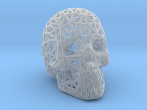 Human Skull with Pattern in Smooth Fine Detail Plastic