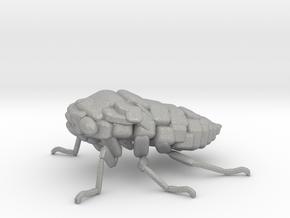 Cicada! The Somewhat Square-ish Sculpture in Aluminum