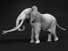 African Bush Elephant 1:25 Giant Bull in White Natural Versatile Plastic
