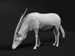 Gemsbok 1:35 Drinking Female in White Natural Versatile Plastic