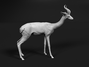 Gerenuk 1:72 Standing Male in Smooth Fine Detail Plastic