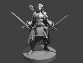 Half Elf Female Bard Paladin in Smooth Fine Detail Plastic