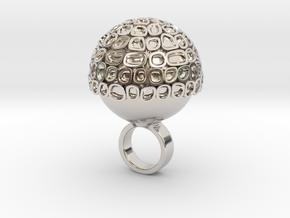 Magno - Bjou Designs in Rhodium Plated Brass