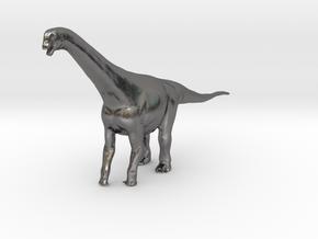 Camarasaurus in Polished Nickel Steel