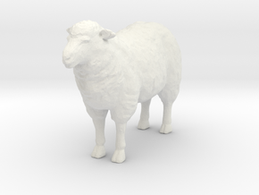 O Scale Sheep in White Natural Versatile Plastic