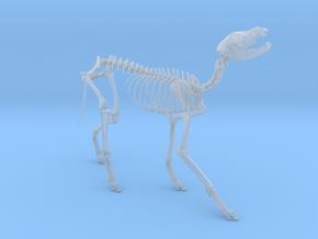 Wolf skeleton in Smooth Fine Detail Plastic