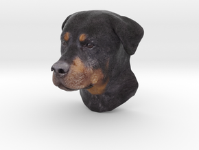 Wall mount / Rottweiler / 150mm / art.#MK011 in Natural Full Color Sandstone