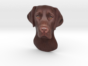 Reliëf / Brown Labrador / 180mm / art.#MK014 in Natural Full Color Sandstone